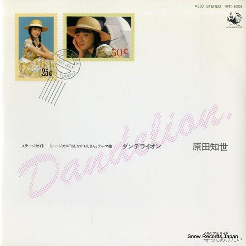 HARADA, TOMOYO dandelion