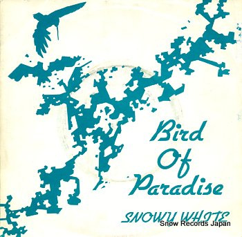 WHITE, SNOWY bird of paradise