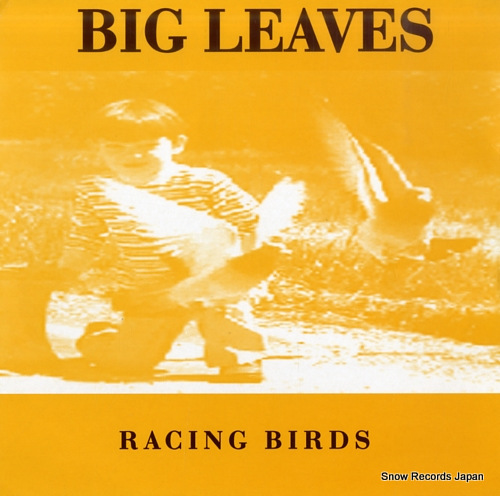 BIG LEAVES racing birds