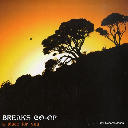 BREAKS CO-OP a place for you R6718 - front cover