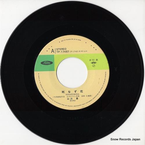 YAMAKAWA, YUTAKA shinazu bana TP-17487 - disc
