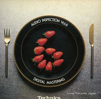 V/A technics audio inspection vol.6