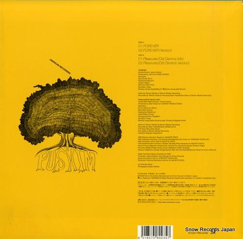 PUSHIM forever SYUM-0235 - back cover