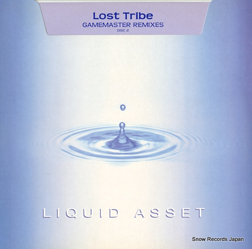 LOST TRIBE gamemaster remixes(disc2) ASSET12015R - front cover