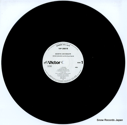 SCHLAKS, STEVEN sensitive and delicate VIP-28015 - disc