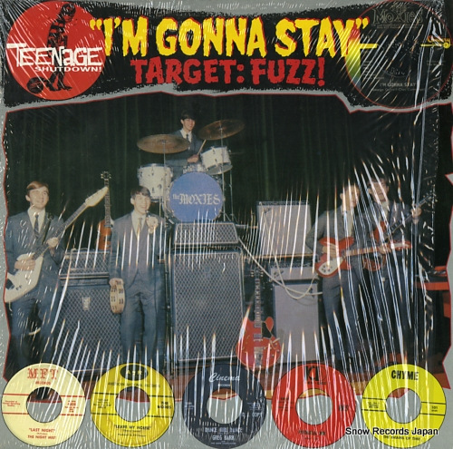 V/A i'm gonna stay (target:fuzz!) T.S.6613