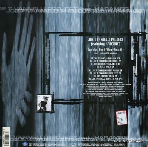JOE T VANNELLI PROJECT sweetest day of may-rmx99 DB095 - back cover
