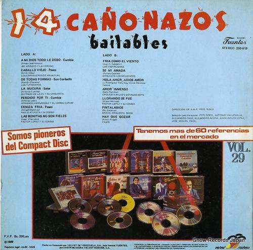V/A 14 canonazos bailables vol.29 200-619