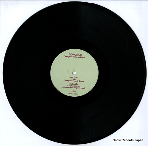 FLOWCHART evergreen noise is flexible SAKI012/FUZ003 - disc