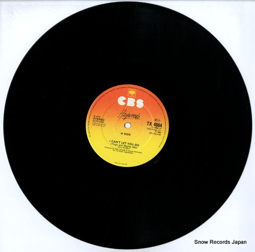 HAYWOODE i can't let you go TX4664 - disc