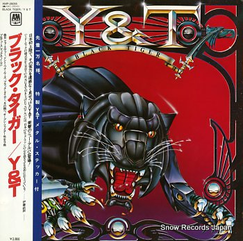 Y&T black tiger