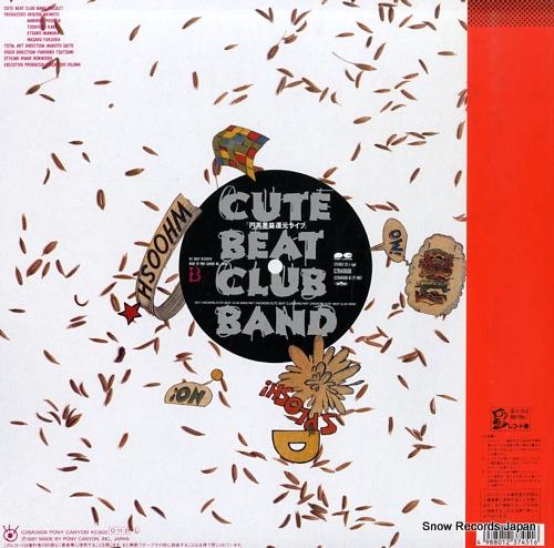 CUTE BEAT CLUB BAND not checkers endakasaeki kangen live C28A0608 - back cover