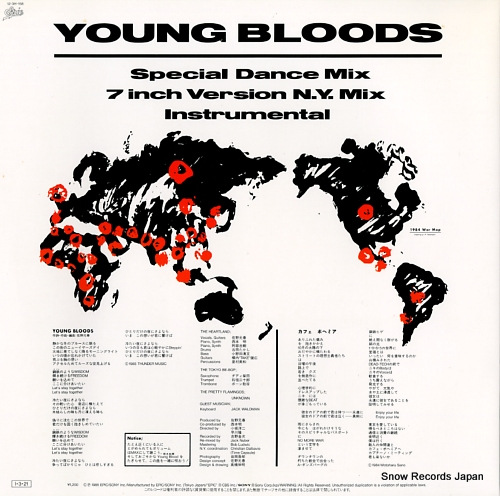 SANO, MOTOHARU young bloods 12.3H-158 - back cover