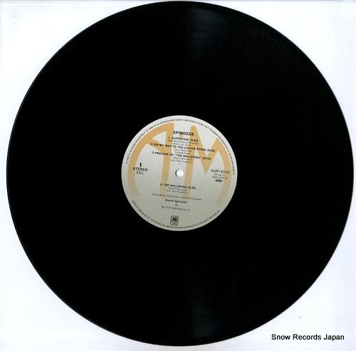 SPINOZZA, DAVID spinozza AMP-4024 - disc